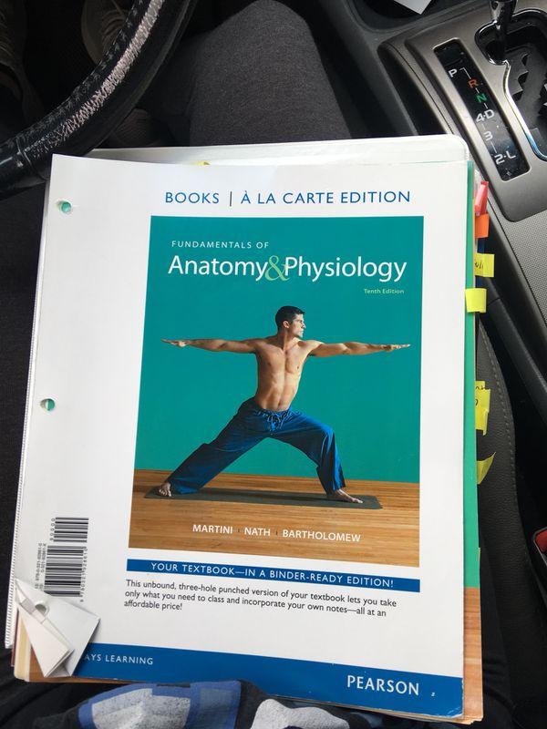 Erfreut Fundamentals Of Anatomy And Physiology Ideen - Menschliche ...