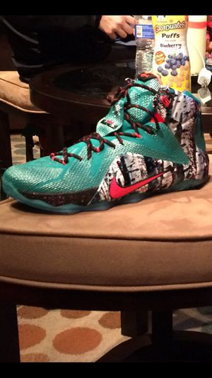 LeBron James 12 x mas