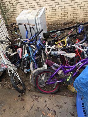 Kids and adult bikes