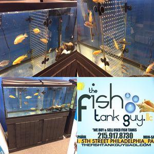 55 gallon fish tank acrylic tank dividers $30