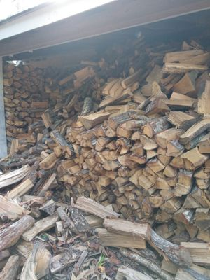 Highest Quality Firewood