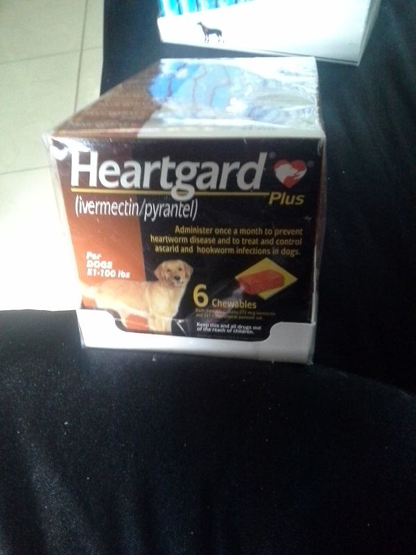 Heartgard Plus for dogs 51100 lbs Pet Supplies in Fort Lauderdale FL