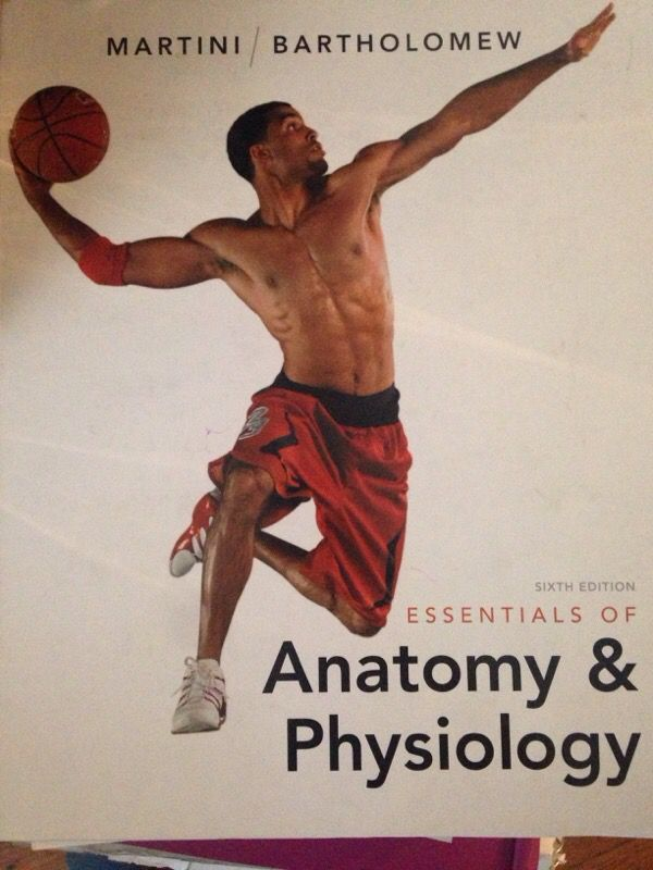 Gemütlich Anatomy And Physiology Book Martini Bilder - Menschliche ...