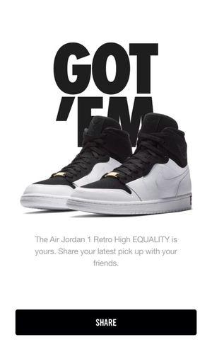 Air Jordan I retro equality