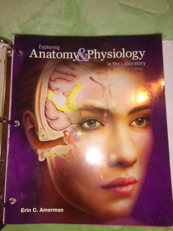 Modern Human Anatomy And Physiology Erin C Amerman Elaboration ...