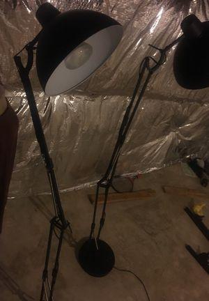 Studio lights (set of 2)