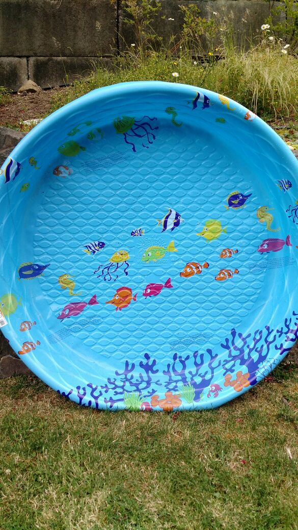 Free Hard Plastic Kiddie Pool New Baby Kids In Bellingham Wa Offerup