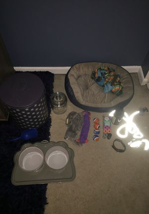 Dog bundle for smallish dogs (needs gone ASAP)