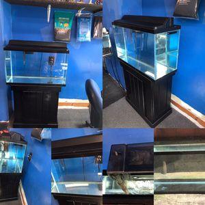 29 gallon aquarium fish tank complete set up $100