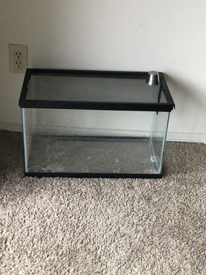 Small glass animal tank