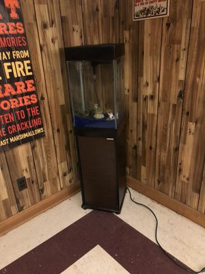 15g fish tank with accessories