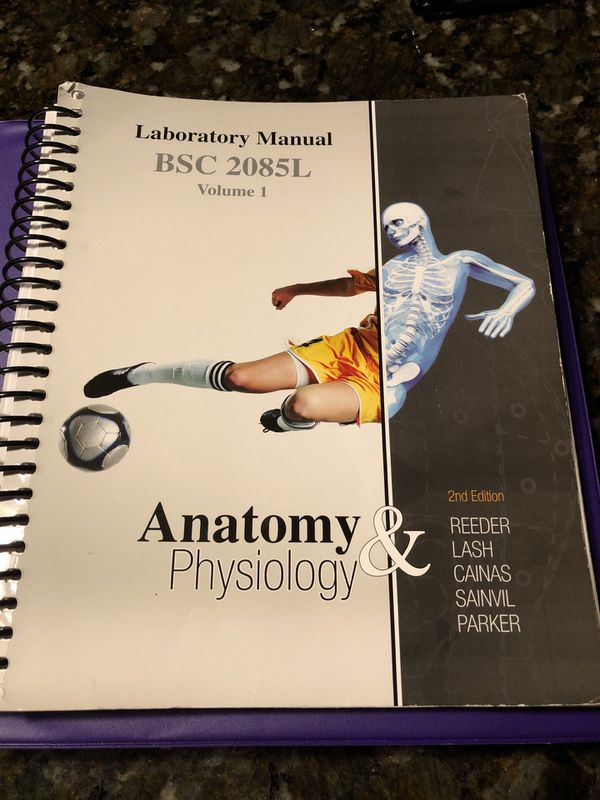Broward College Anatomy 1 Lab Manual (Books & Magazines) in Davie ...