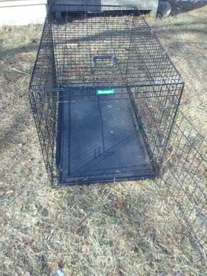 XXXL Remington Dog Cage