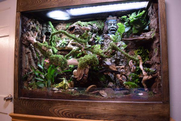 Custom Made Wooden Reptile Terrarium/Vivarium/Tank (Pet ...