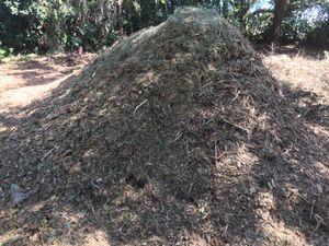Mulch 8 yards