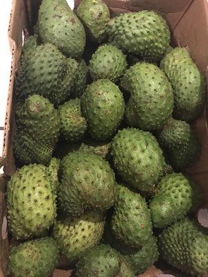GUANABANA - Soursop PRICE FIRM