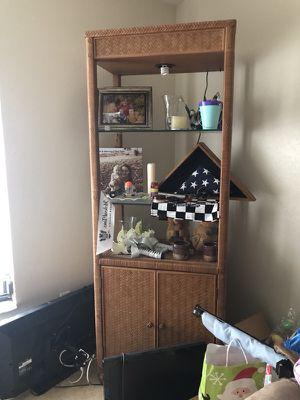 Tall shelf case