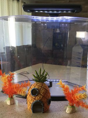 Tetra 5 gallons fish tank with lights in great condition. Acrylic.