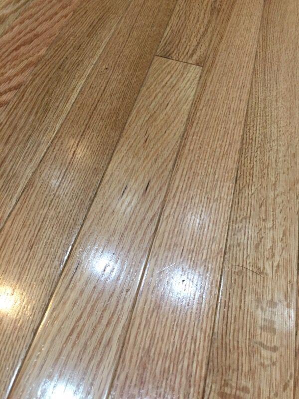 Red oak solid hardwood flooring general in seattle wa for Hardwood floors seattle