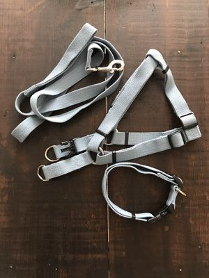 Coastal Pet New Earth 3-Piece Soy Dog Leash Harness and Collar Bundle in Light Blue