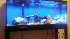 55-Gallon fish tank in very good condition.